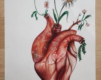 Heart drawing - print