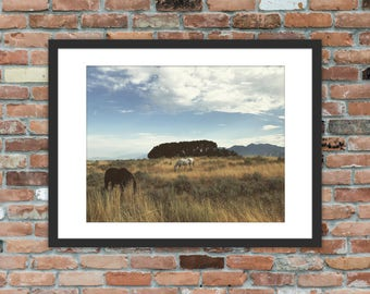 Horses in the Utah Brush – Landscape Photography