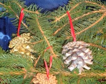 Set of 5 pine cones hanging PROMO