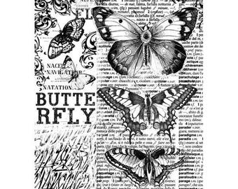 Butterfly rice paper