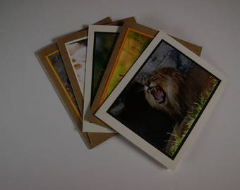5 assorted cards