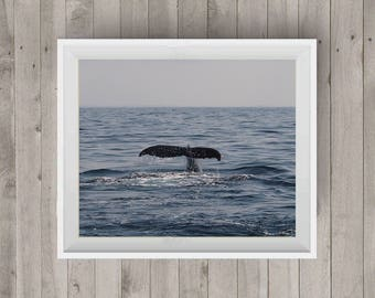 Whale Tail Up|Wildlife Photography|Whale Tail Photo|Ocean Photography|Photography Art|Digital Image|Downloadable Print|Wall Art|Home Decor