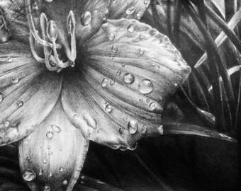 Print: Silent Rain