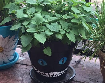 Hand Painted Clay Flower Pot, Cheshire Cat