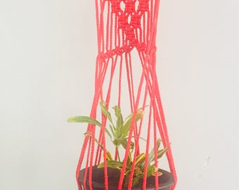 Red Corded wall plant holder with wooden hanger hook