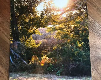 Sunset on the Farm Print, Sunset Print, Cornfield Print, Fine Art Print, Wall Art, Farmhouse Decor