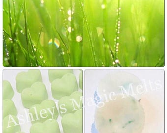 3 fresh cut grass soy wax melts, scented gifts for her, fresh scented melts, strong memts, long lasting wax, cheap melts
