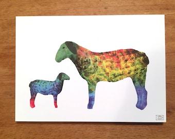 Postcard, greeting card, sheep card