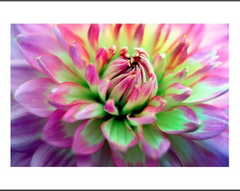 Photograph Tropical Flower MF-LS019