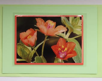 Card,gift card,photographic card.