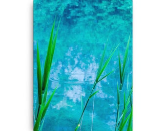 Blue in Green - High Quality Canvas Print