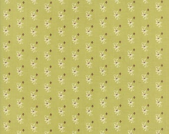 Hazel and Plum - Pumpkin Seeds in Citron Green: sku 20293-18 cotton quilting fabric by Fig Tree and Co. for Moda Fabrics