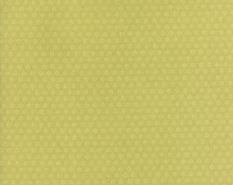 Hazel and Plum - Posies in Citron Green: sku 20294-18 cotton quilting fabric by Fig Tree and Co. for Moda Fabrics