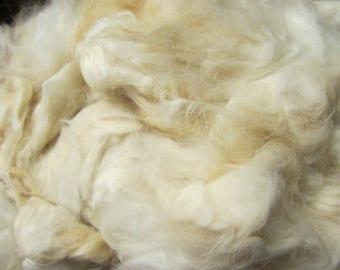 french angora bunny rabbit spinning fiber