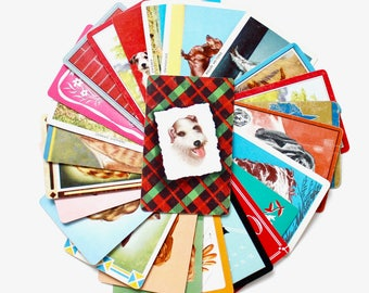 Vintage Dog Canine Playing Card Collection