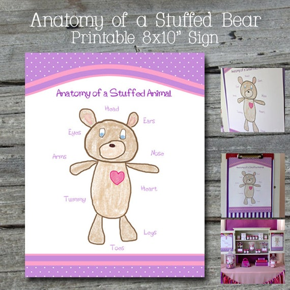 Doc Anatomy of a Stuffed Bear - Instant Download by Swish Printables ...