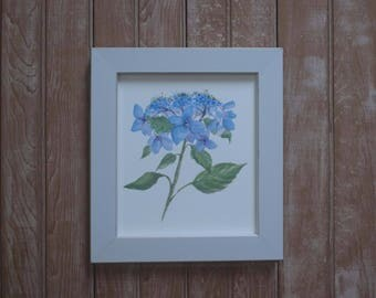 Framed lace cap hydrangea print-  hydrangea watercolors- framed art- botanical watercolor- florals- framed floral painting- blue hydrangea