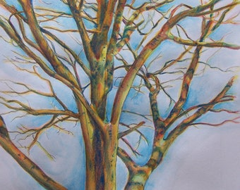 Winter Tree  Watercolor Painting