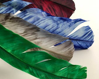 TURKEY QUILL, Multi color  , 4 pieces / Q-A