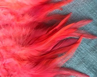 VIVACE  SADDLE,  , Neon Flamingo Pink , V - 14