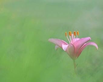 Digital Download - Solitude - Printable and Editable Zen Mindful Meditation Art in PDF and JPEG Formats