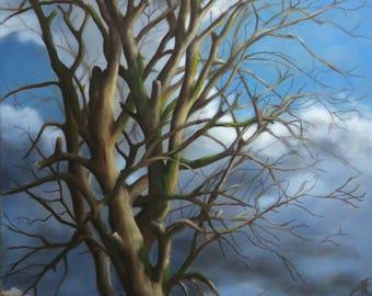 Coming Soon - Original Oil Painting of Bare Oak Tree