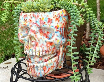 Skull, planter, succulent planter, head planter, ceramic, Bright, multi color, red, blue, yellow, drain hole, unusual, house plant