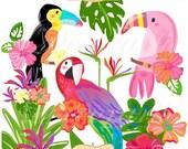 ON SALE Tropical birds Paradise clip art - birds clipart, tropical flowers clipart, Parrot clipart, watercolor style-  small commercial use