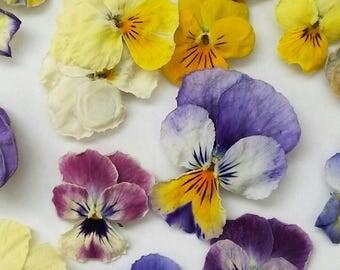 Dried Violas, Dry Flowers, Craft Supplies, Wedding Decorations, Table Decor, Floral, Fairy, Confetti, Embelishment, Pansy, Wedding Decor, 25