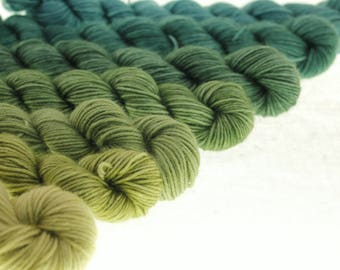 Mini Skein Ombre Gradient Dyed DK or Fingering - Take a Hike - 700 yards