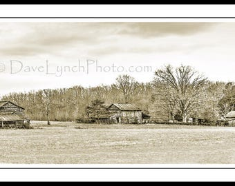 Three Tobacco Barns - Charlotte County VA - Farm - In Color Black and White or Vintage Sepia - Fine Art Photography prints by Dave Lynch