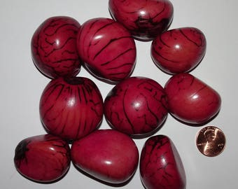 10 Fuchsia Purple Tagua Nuts Beads, NOT Drilled, EcoBeads, Organic Beads, Vegetable Ivory 14