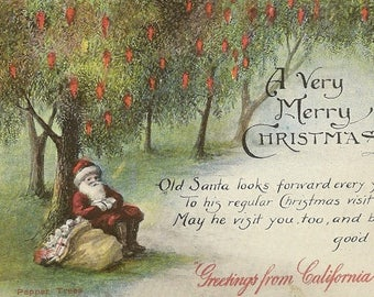 Santa Rests Under a Pepper Tree Greetings from California Vintage Christmas Postcard M Kashower