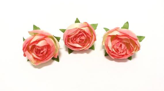 Grandiflora (pink) - Wikiwand