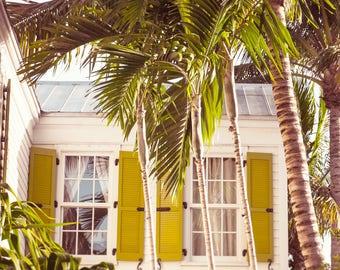 Art, Photography, Beach Cottage Photography, Wall Art, Print, Cottage Decor,Travel Photo, Palm Tree Print