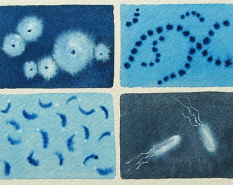 Blue Microbes - original watercolor painting of microbes