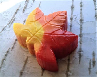 Fall soap etsy for Fall soap scents