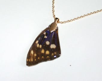 Real Butterfly wing pendant and chain gold color (111)