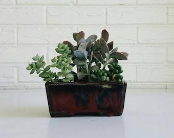 Oxblood Red Mid Century Style Rectangular Ceramic Planter - Modern Minimal Decor - Oriental Plant Container