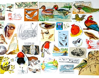 BIRDS supplies - Vintage paper pack -  themed paper ephemera pack - paper ephemera lot - craft inspiration kit