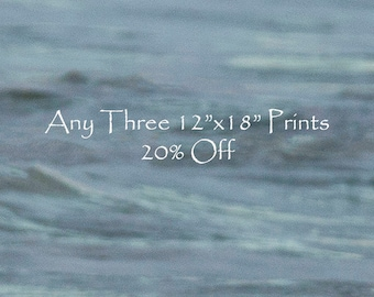 "25% Off - Select Any Four 12""x18"" fine art horse prints -Prints - Photographs - Discount"