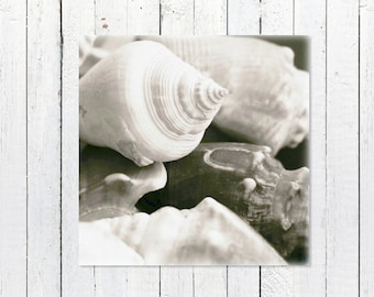 Beach Printable | DIY Gift Coastal Art Printable | Instant Download Black + White Sea Shell Print | Rustic Coastal Theme Decor Printable Art