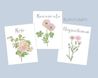 Blush  Flower Table Cards, Blush Flower Table Tent  Pink Blush Flower Table Number, Blush Wedding Table  Blush Floral place cards, markers