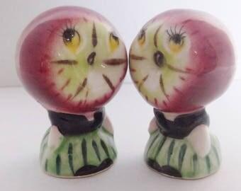Vintage Anthropomorphic Apple Head Salt and Pepper Shakers Vintage Porcelain Kitchen Accessories