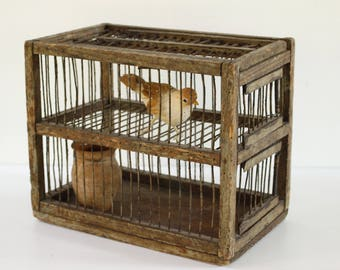 "French Antique Bird Cage...Authentic Bird Trap...10"" x 6"" x 8"""