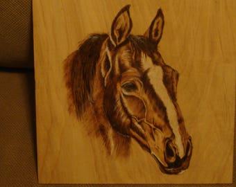 Horse - Wood Burning Art - Pyrography