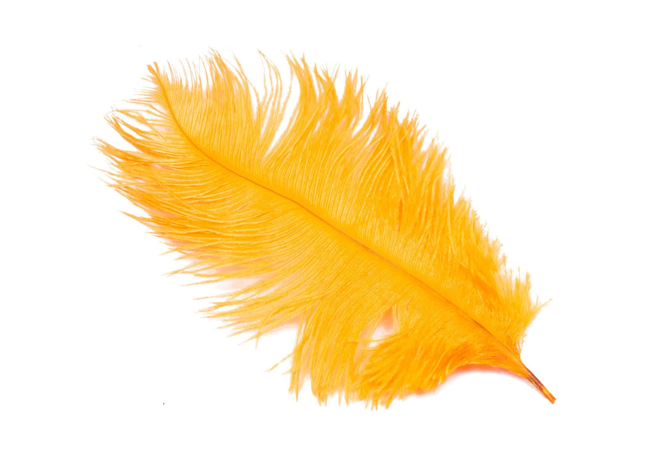 Pieces orange ostrich feather plumes quot long