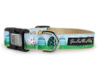 Easter Dog Collar with Easter Eggs in Grass, Spring, Girl or Boy Dog Collar - Eggcellent