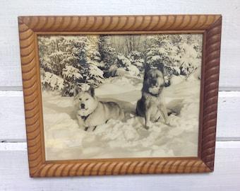 Jahrgang Sepia gerahmte Foto - Husky Schlittenhunde im Schnee