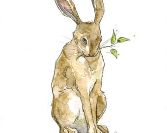 Sam the Hare (original watercolor)
